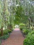 This path leads to the garden followed by the Jackson gravesites and family cemetery.