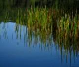 September Trips to the reservoir