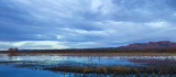 Panoramaatbosque.jpg