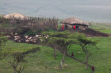Masai-Boma-RTP.jpg