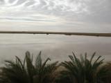48 Nuwamisa oasis.JPG