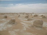 79 white desert.JPG
