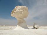 83 white desert.JPG