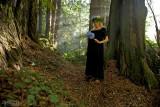Kalmelea in Redwoods