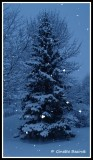 magie de la neige
