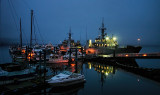 Harbour Before Dawn