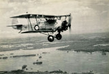 Armstrong Whitworth Atlas