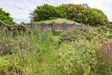 IMG_6208.jpg Le Creux ès Faries Passage Tomb, Fort Saumarez Headland - © A Santillo 2014