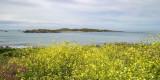 IMG_6219.jpg Lihou Island from Fort Saumarez Headland - © A Santillo 2014