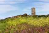 IMG_6221-Edit.jpg Fort Saumarez WWII German obersvation tower- Fort Saumarez Headland, St Pierre du Bois - © A Santillo 2014