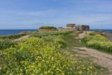 IMG_6405.jpg Fort Hommett, Fort Hommett Headland, Castel - © A Santillo 2014