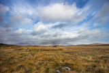IMG_4975.jpg The Twelve Bens Gowlan West near Lough Cloonagat - Galway - © A Santillo 2013