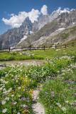 _MG_1065.jpg Monte Bianco, Courmayeur, Valle d'Aosta - © A Santillo 2006