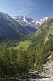 _MG_1147.jpg Parco Nazionale Gran Paradiso, Cogne, Val Valnontey - © A Santillo 2006