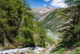 _MG_0703.jpg Valnontey River and Valley - Parco Nazionale Gran Paradiso, Cogne - © A Santillo 2006