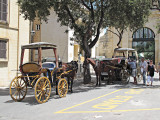 G10_0089.jpg Karozzini (horse drawn carriage) - Upper Barrakka Gardens, Valletta - © A Santillo 2009