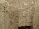 G10_0150.jpg Carving - Tarxien Temples, Tarxien - © A Santillo 2009