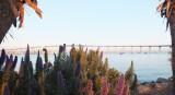 El Coronado bridge