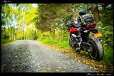 ride_photo_2018_011.jpg