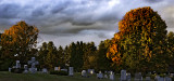 autumn in a cemetery