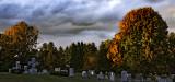 autumn in a cemetery