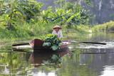 Ninh_Binh094.jpg