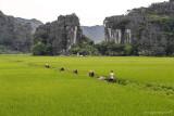 Ninh_Binh158.jpg