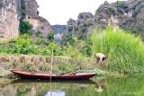 Ninh_Binh109.jpg