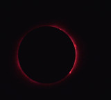 Solar Eclipse 2017 Eclipse Photos