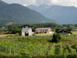 20160910_021321 The Houses Above the Vines (Sat 10 Sep, 11:45)