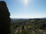 20160823_015441 Beaming On The Vineyards