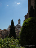 20160823_015490 The Duomo, The Tower Of The Duomo, And Reflections On Siena