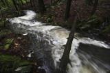 Flooding Freshet