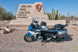 BMW R1200RS at Organ Pipe Cactus National Monument