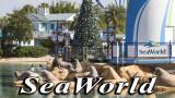 Seaworld 2017