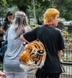 Aways Make Sure Your Hair Matches Your Tiger Purse