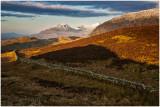 View from Llyn Gamallt