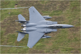f15.png