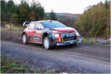 rally5.jpg