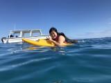 Honeymoon Island snorkelling trip