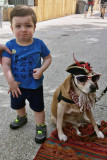 Hmmm....ordinarily he's not upset around dogs....