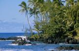 03C-11-Ragged shoreline of Ke`anae