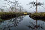Goodbys Lake in Fog 4