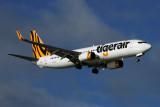 TIGERAIR BOEING 737 800 HBA RF 5K5A0537.jpg