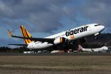 TIGERAIR BOEING 737 800 HBA RF 5K5A0561.jpg