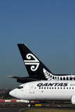 QANTAS AIR NEW ZEALAND AIRCRAFT SYD RF 5K5A3117.jpg