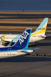ANA AIR DO AIRCRAFT HND RF 5K5A8499.jpg