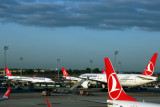 TURKISH_AIRLINES_AIRCRAFT_IST_RF_5K5A0993.jpg