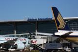 AIR_CANADA_SINGAPORE_AIRCRAFT_BNE_RF_5K5A1886.jpg