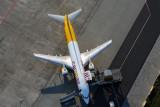 CARGOAIR_DHL_BOEING_737_400F_BUD_RF_5K5A4360.jpg